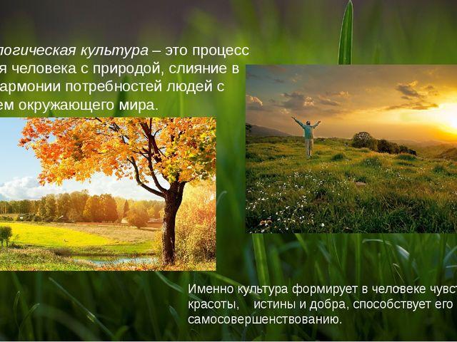Экологическая культура – это процесс единения человека с природой, слияние в...