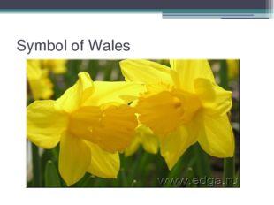 Symbol of Wales
