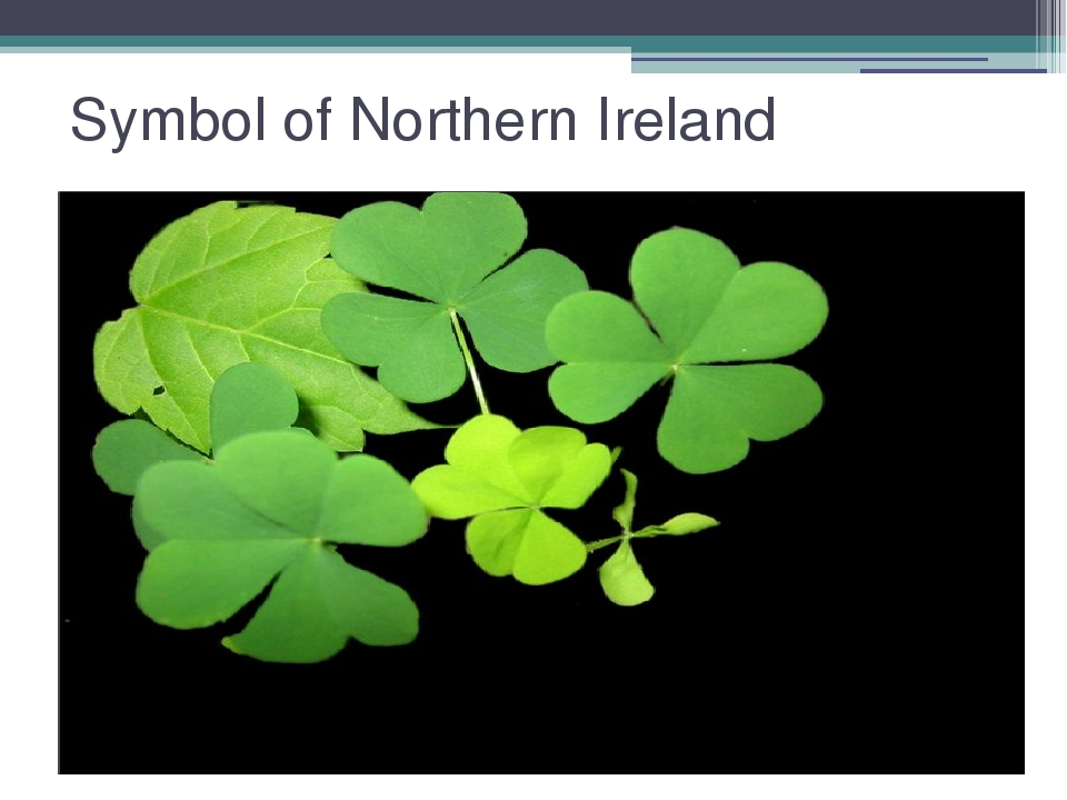 Symbol of Northern Ireland