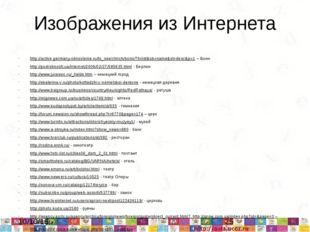 Изображения из Интернета http://active.germany-obnovlenie.ru/to_see/chirch/bo
