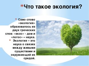 Само слово «экология» образовалось из двух греческих слов: «экос» - дом и «л