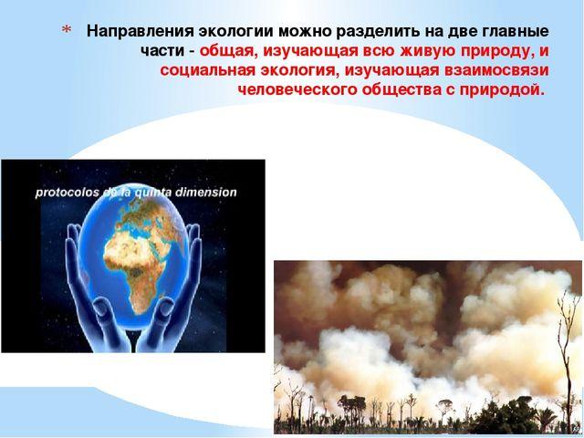 Направления экологии можно разделить на две главные части - общая, изучающая...