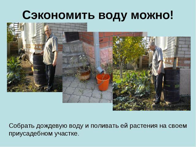 Сэкономить воду можно! Собрать дождевую воду и поливать ей растения на своем...
