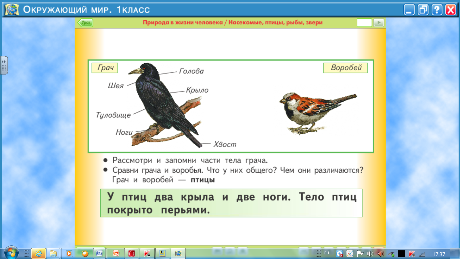 hello_html_m26c971ce.png