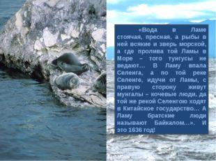 «Вода в Ламе стоячая, пресная, а рыбы в ней всякие и зверь морской, а где пр