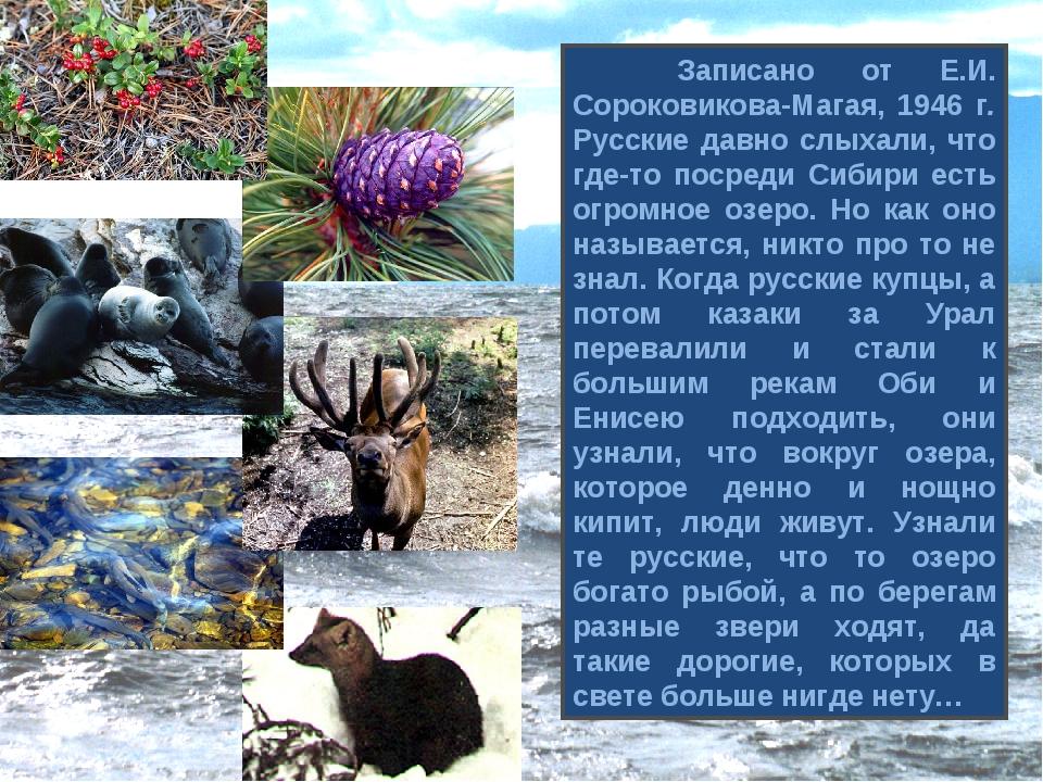 Записано от Е.И. Сороковикова-Магая, 1946 г. Русские давно слыхали, что где-...