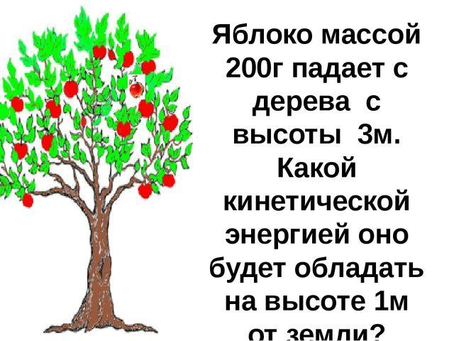 Яблоко массой 200г падает с дерева с высоты 3м. Какой кинетической энергией о...