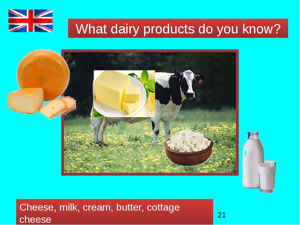 What dairy products do you know? Cheese, milk, cream, butter, cottage cheese
