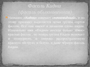 Название «Кидни» означает «почковидный», и по этому признаку выделяется целая