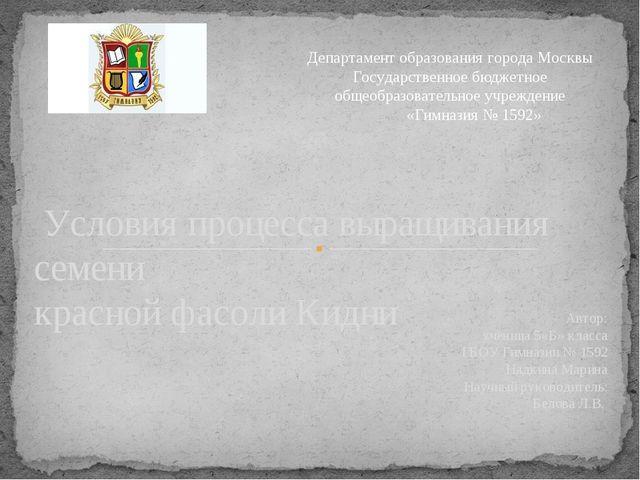 Автор: ученица 5«Б» класса ГБОУ Гимназии № 1592 Надкина Марина Научный руково...