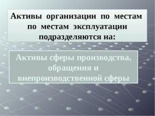 Активы сферы производства, обращения и внепроизводственной сферы Активы орган