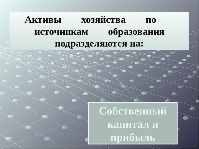 Собственный капитал и прибыль Активы хозяйства по источникам образования подр...