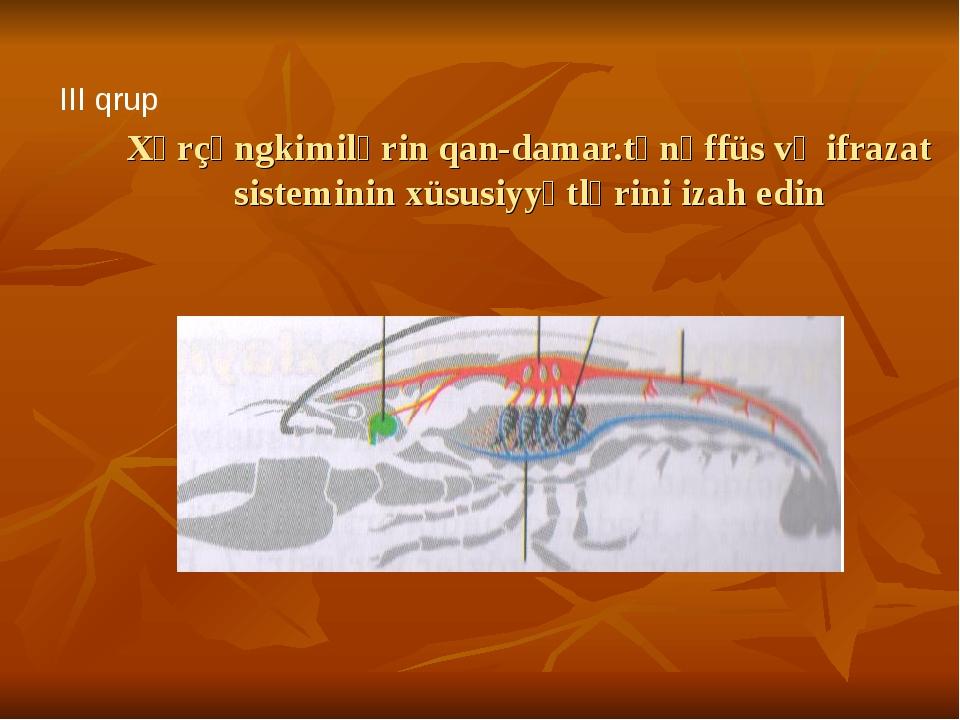 Xərçəngkimilərin qan-damar.tənəffüs və ifrazat sisteminin xüsusiyyətlərini iz...