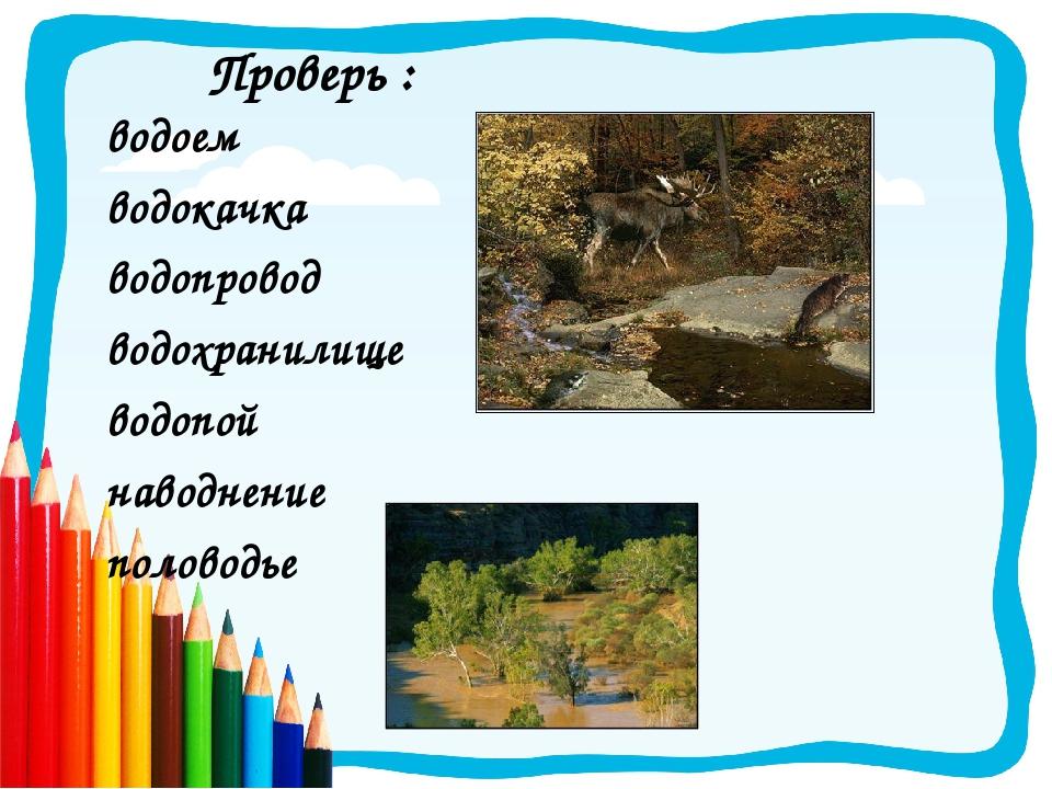 Подберите и запишите родственные слова: 1-й ряд – с корнем «лес», 2-й ряд – с...