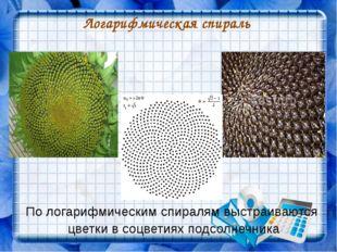 Логарифмическая спираль По логарифмическим спиралям выстраиваются цветки в со