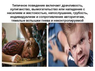 Типичное поведение включает драчливость, хулиганство, вымогательство или напа