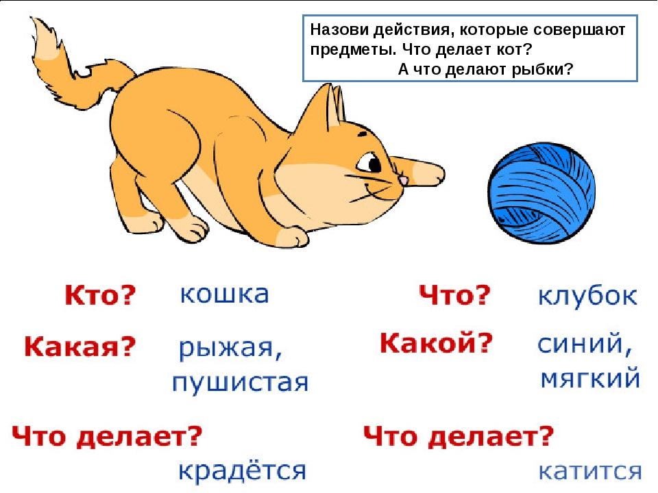 Назови действия, которые совершают предметы. Что делает кот? А что делают рыб...