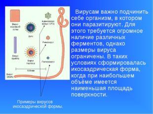 Вирусам важно подчинить себе организм, в котором они паразитируют. Для этого