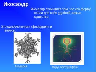 Икосаэдр Икосаэдр отличился тем, что его форму сочли для себя удобной живые с