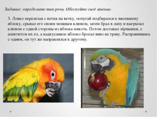 3. Ловко перелезая с ветки на ветку, попугай подбирался к висевшему яблоку, с