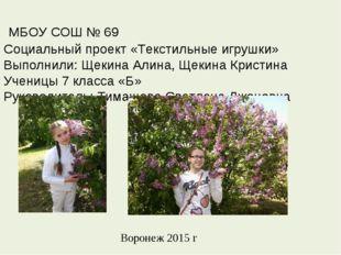 МБОУ СОШ № 69 Социальный проект «Текстильные игрушки» Выполнили: Щекина Алин