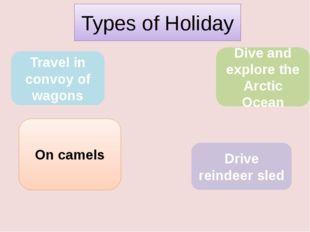Types of Holiday Travel in convoy of wagons On camels Drive reindeer sled Di