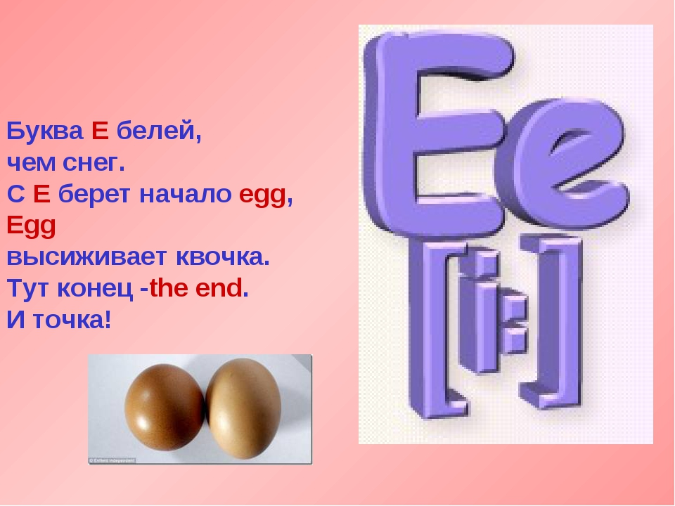 Буква Е белей, чем снег. С Е берет начало egg, Egg высиживает квочка. Тут кон...