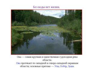 Без воды нет жизни. Ока— самая крупная и единственная судоходная река област