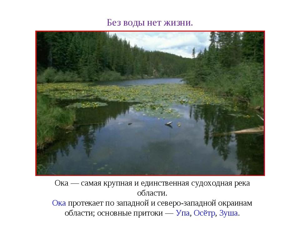 Без воды нет жизни. Ока— самая крупная и единственная судоходная река област...