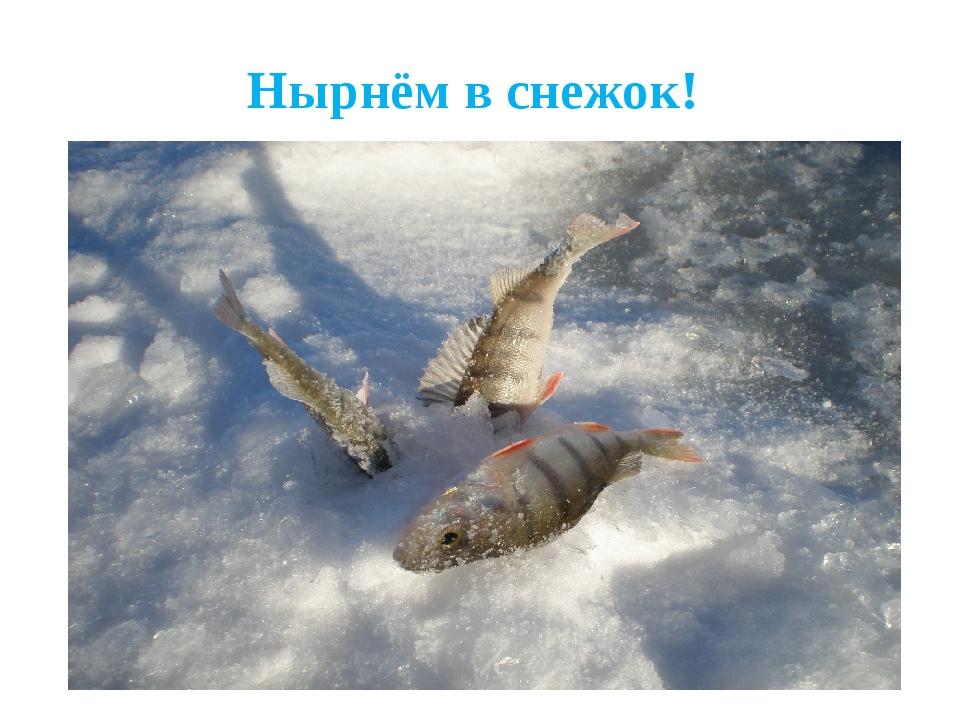 Нырнём в снежок!