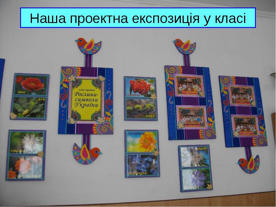Наша проектна експозиція у класі