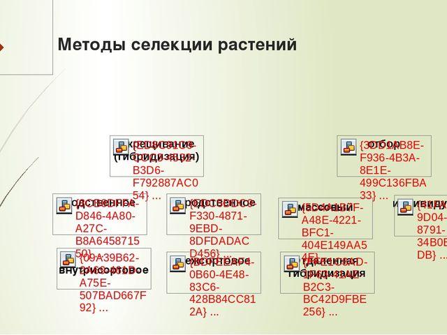 Методы селекции растений