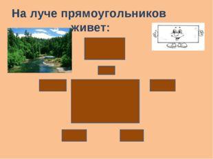 На луче прямоугольников живет:
