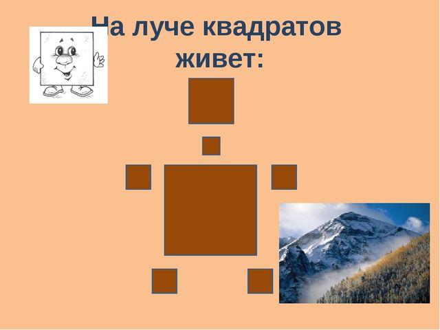 На луче квадратов живет: