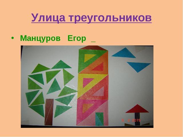Улица треугольников Манцуров Егор