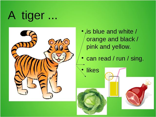 A tiger ... is blue and white / orange and black / pink and yellow. can read...