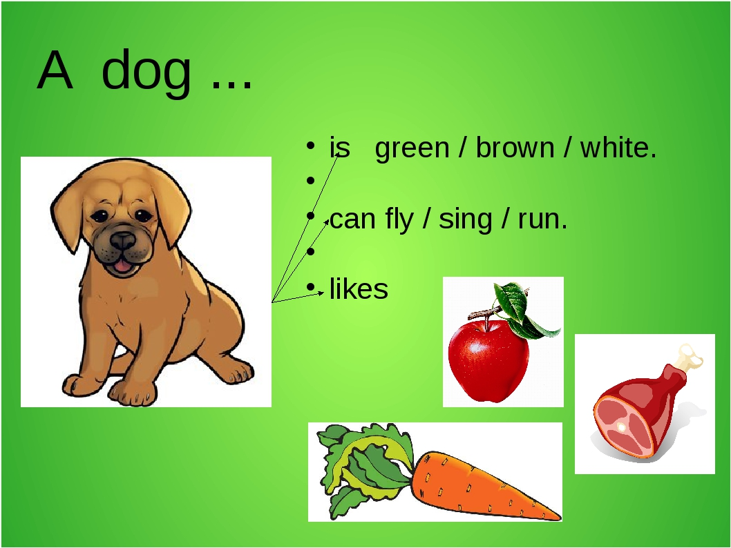 A dog ... is green / brown / white. can fly / sing / run. likes