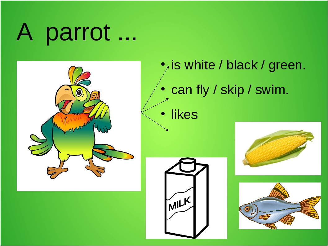 A parrot ... is white / black / green. can fly / skip / swim. likes