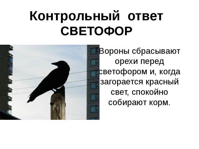 Контрольный ответ СВЕТОФОР Вороны сбрасывают орехи перед светофором и, когда...