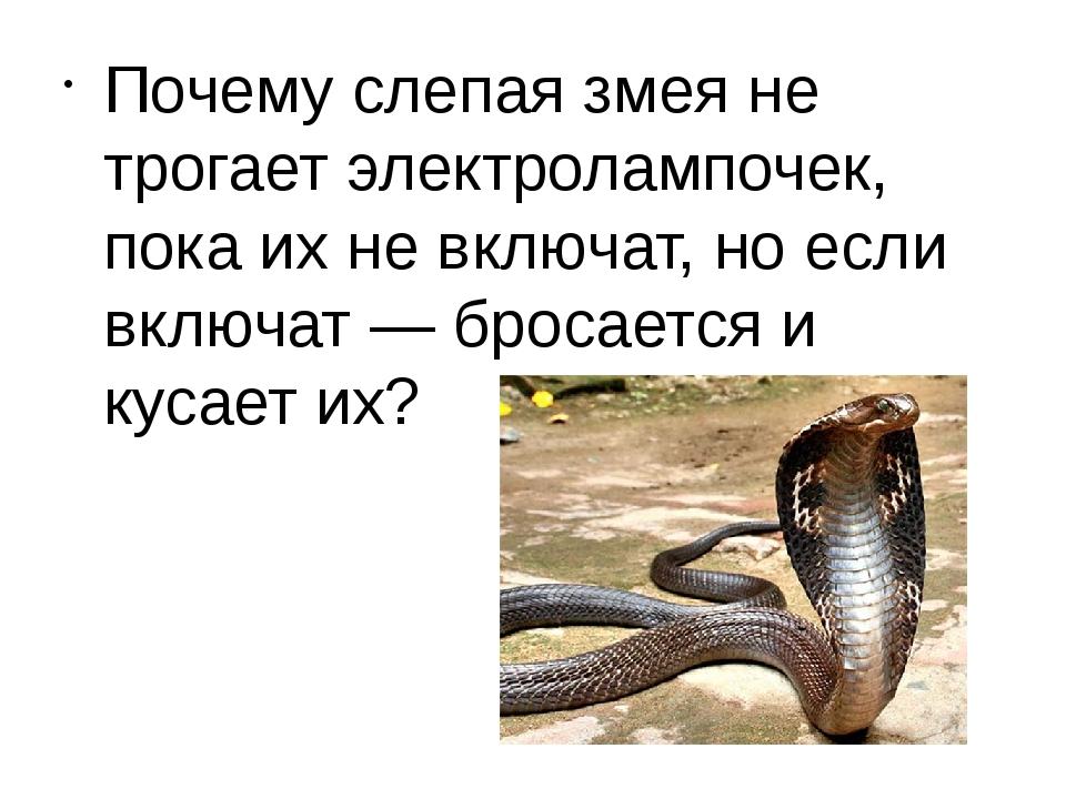 Почему слепая змея не трогает электролампочек, пока их не включат, но если в...