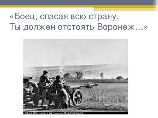 «Боец, спасая всю страну, Ты должен отстоять Воронеж…»