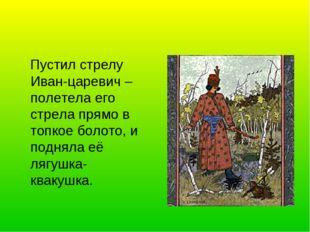 Пустил стрелу Иван-царевич – полетела его стрела прямо в топкое болото, и по