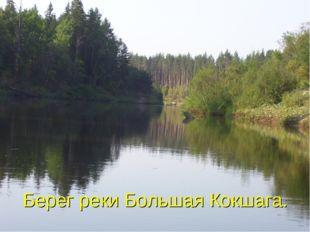 Берег реки Большая Кокшага.