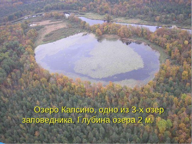Озеро Капсино, одно из 3-х озер заповедника. Глубина озера 2 м.
