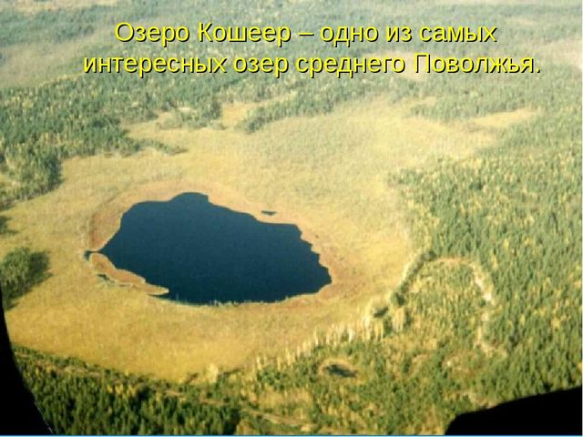 Озеро Кошеер – одно из самых интересных озер среднего Поволжья.