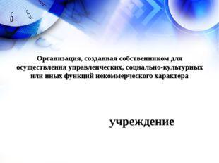 учреждение Организация, созданная собственником для осуществления управленчес