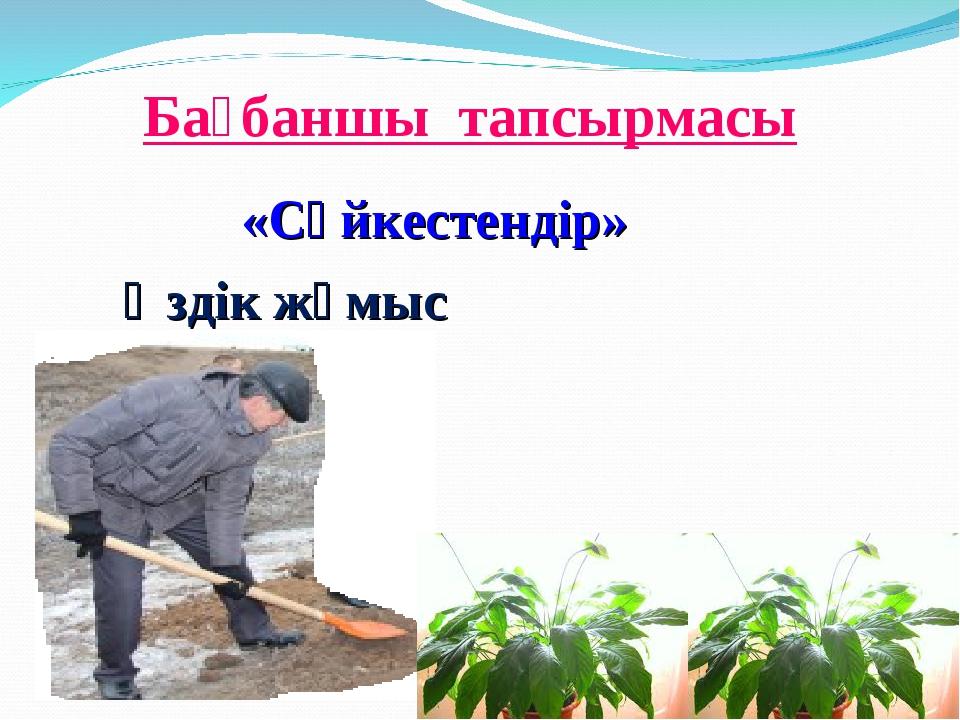 Бағбаншы тапсырмасы «Сәйкестендір» Өздік жұмыс