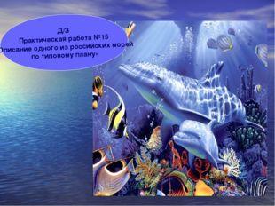 Д/З Практическая работа №15 «Описание одного из российских морей по типовому