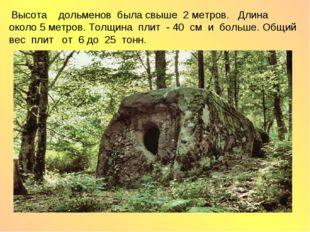 Высота дольменов была свыше 2 метров. Длина около 5 метров. Толщина плит - 4