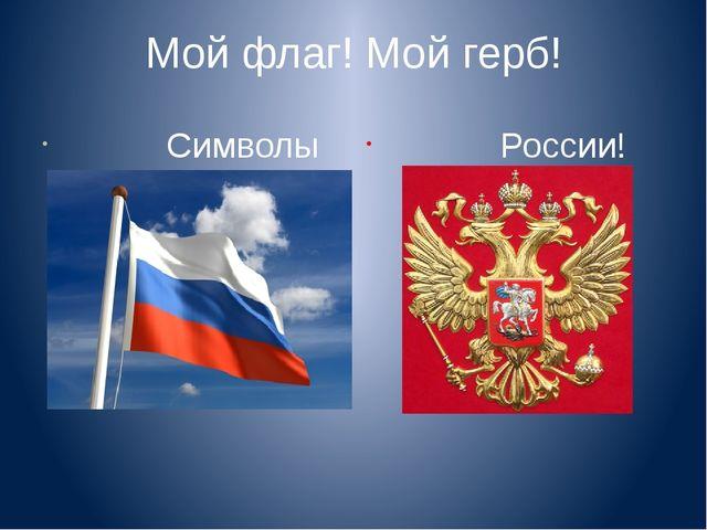 Мой флаг! Мой герб!           Символы
